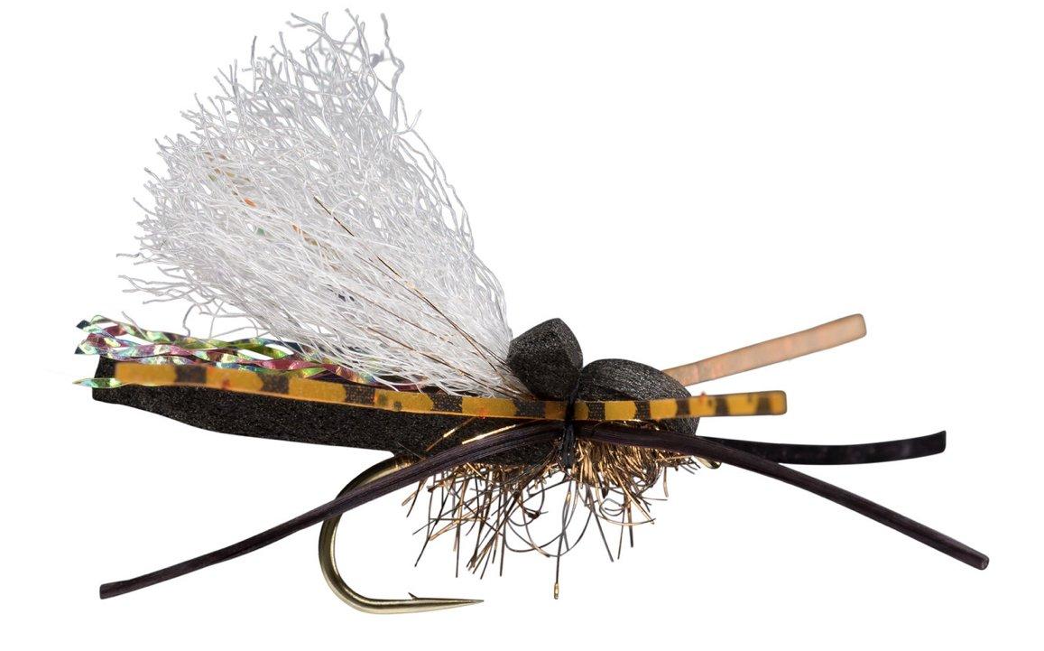Flat Head Cicada size 8