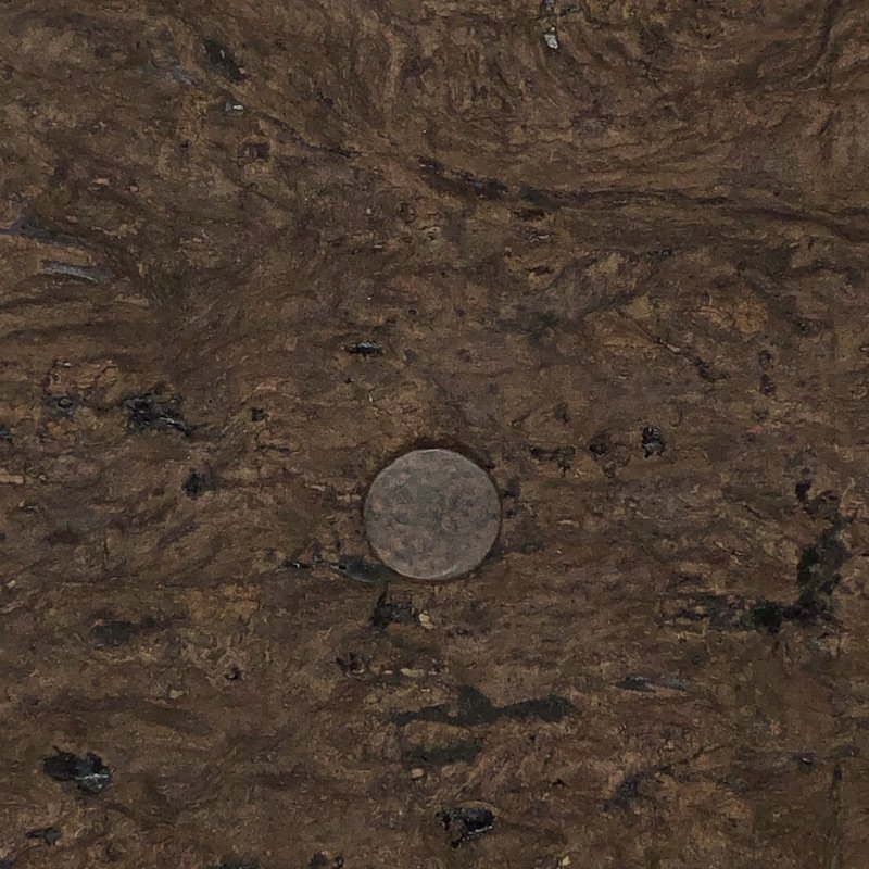 Rusted Metal Button - multiple sizes