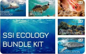 Virtual Learning Ecology Kit Bundle