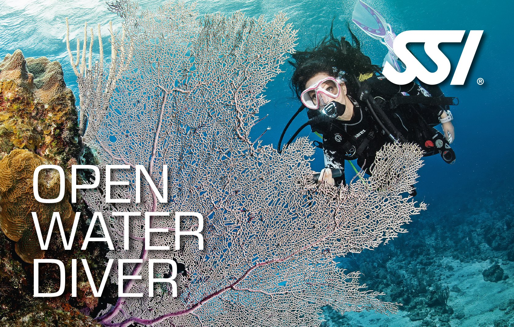 Virtual Open Water Certification