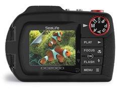 DC2000 Screen Shield