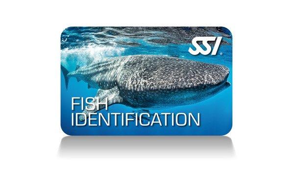 Virtual Fish Identification Ecology Course
