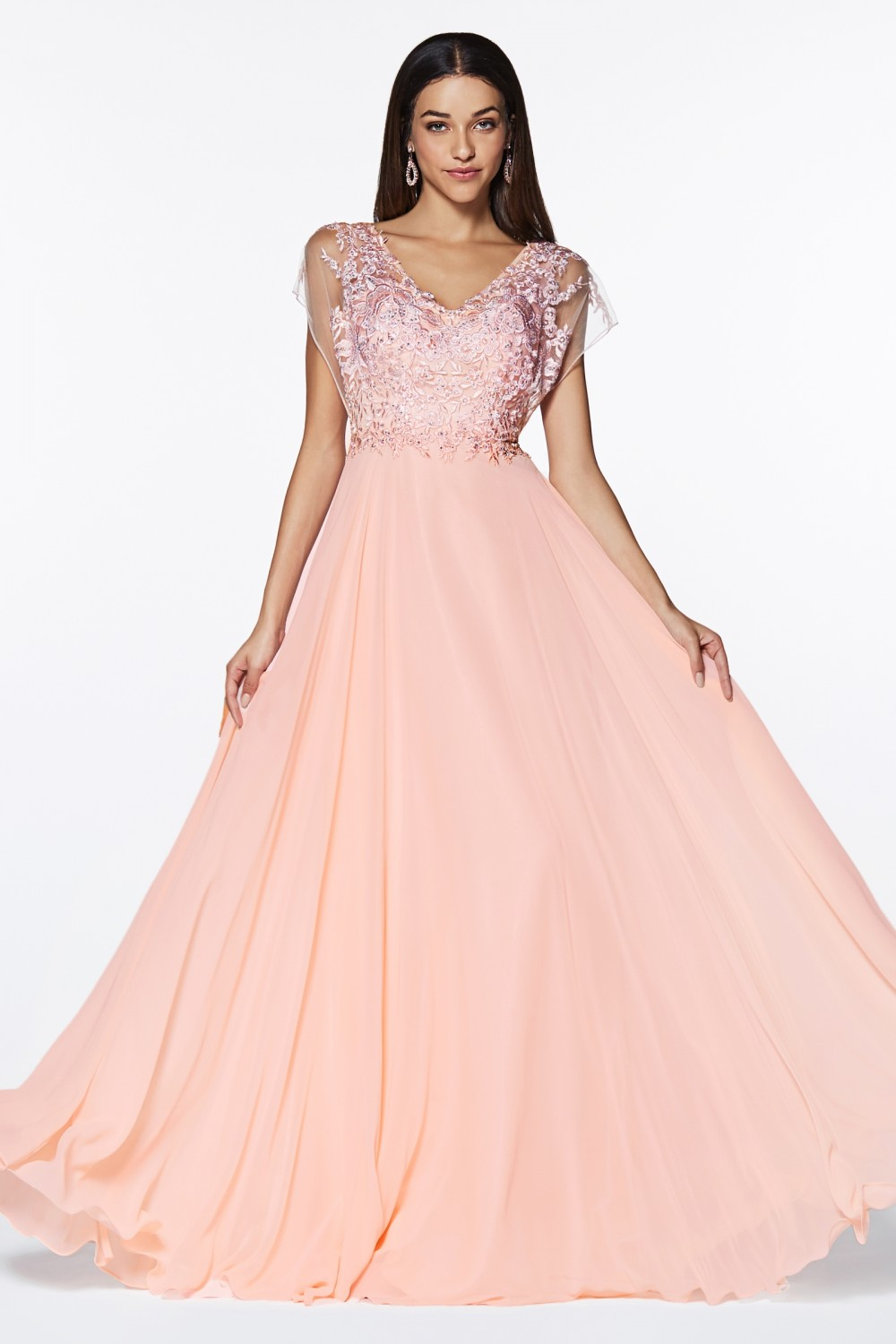 Blush A-line chiffon gown with lace bodice and flutter sleeve.