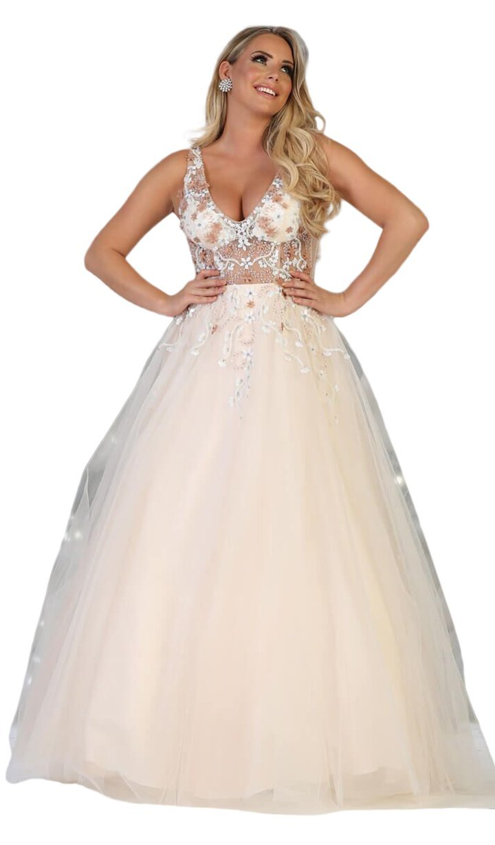 Blush Sheer Bodice Full Gown