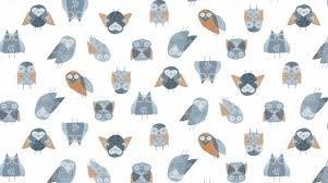 Dear Stella Stay Wild Owls White