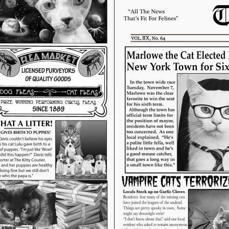 Timeless Treasures Newsprint Cat C6705-News