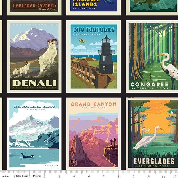 Riley Blake Designs National Parks C8780