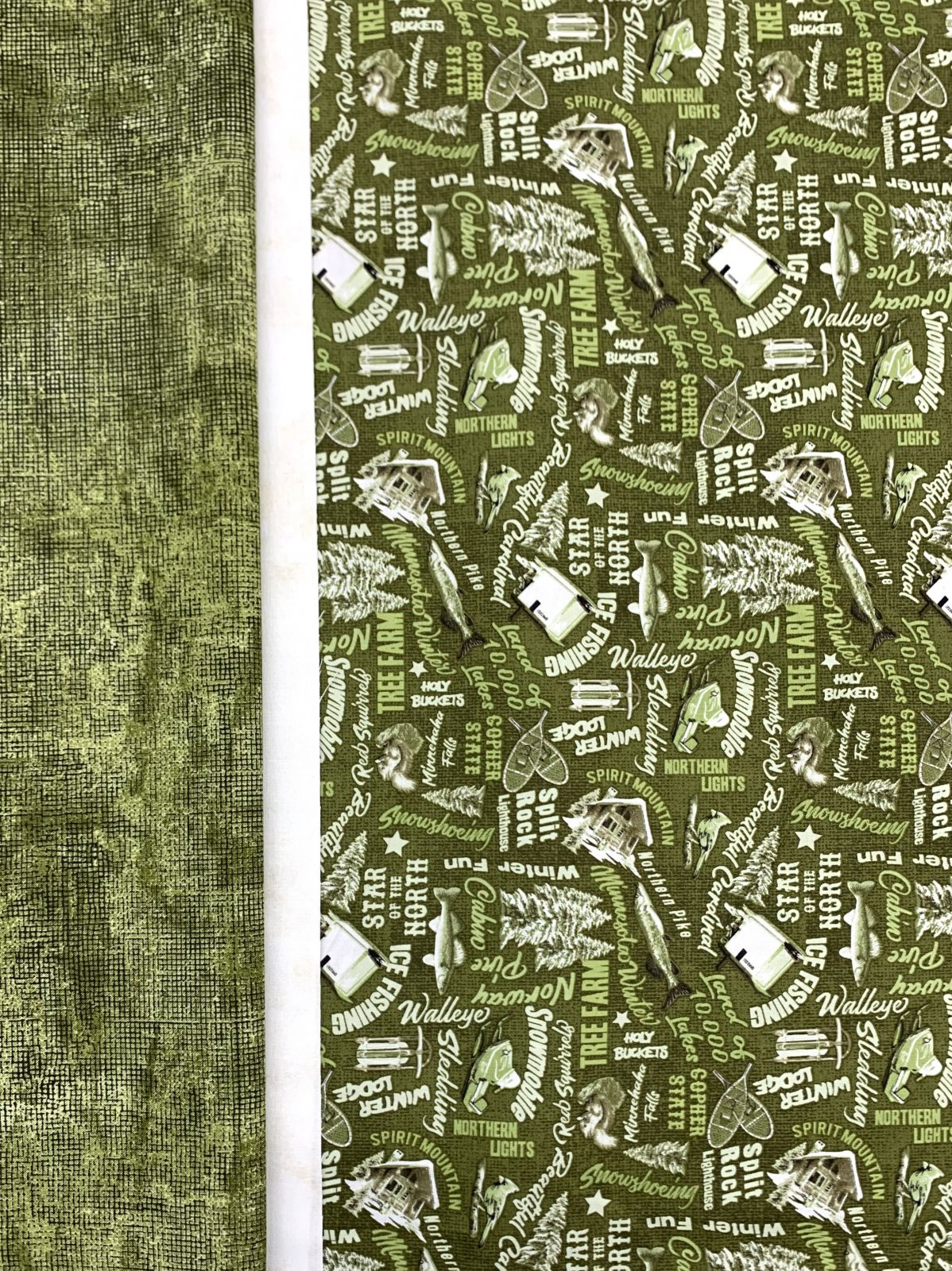 Clothworks Quilt Minnesota Shop Hop Text Pillowcase Kit (Green)