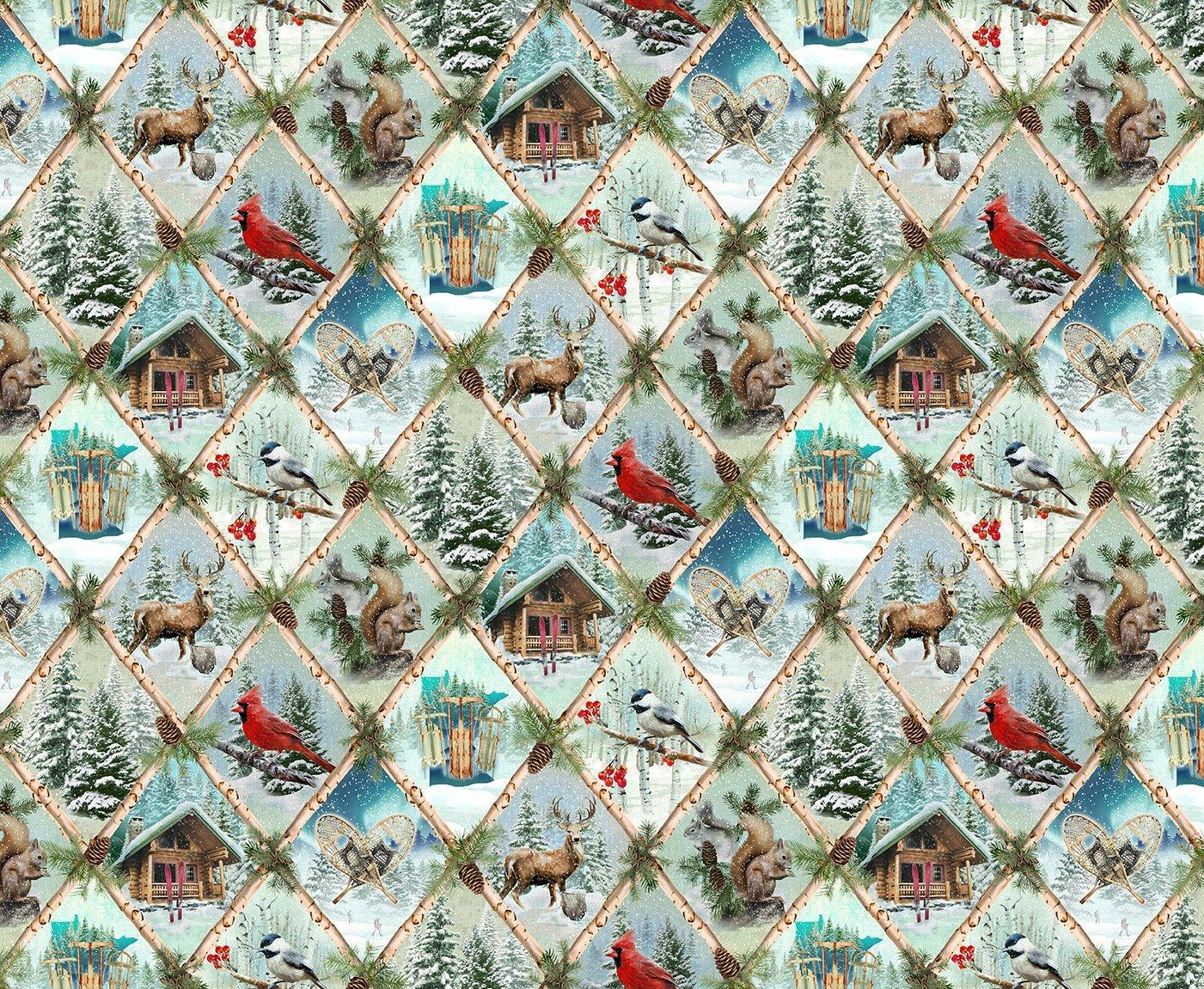 Clothworks Quilt Minnesota 2021 Y3314-98 Digital Nature Scenes Sky