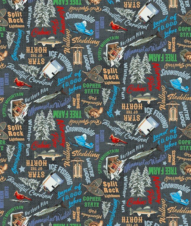 Clothworks Quilt Minnesota 2021 Y3319-55 MN Words Multicolor