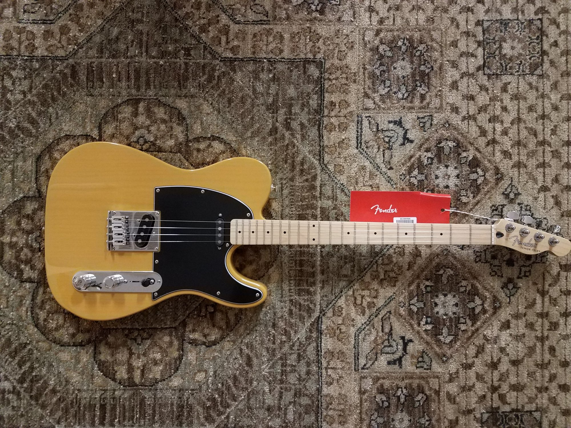 Fender Alternate Reality Tenor Telecaster in Butterscotch Blonde w/ Gig Bag & Pro Setup