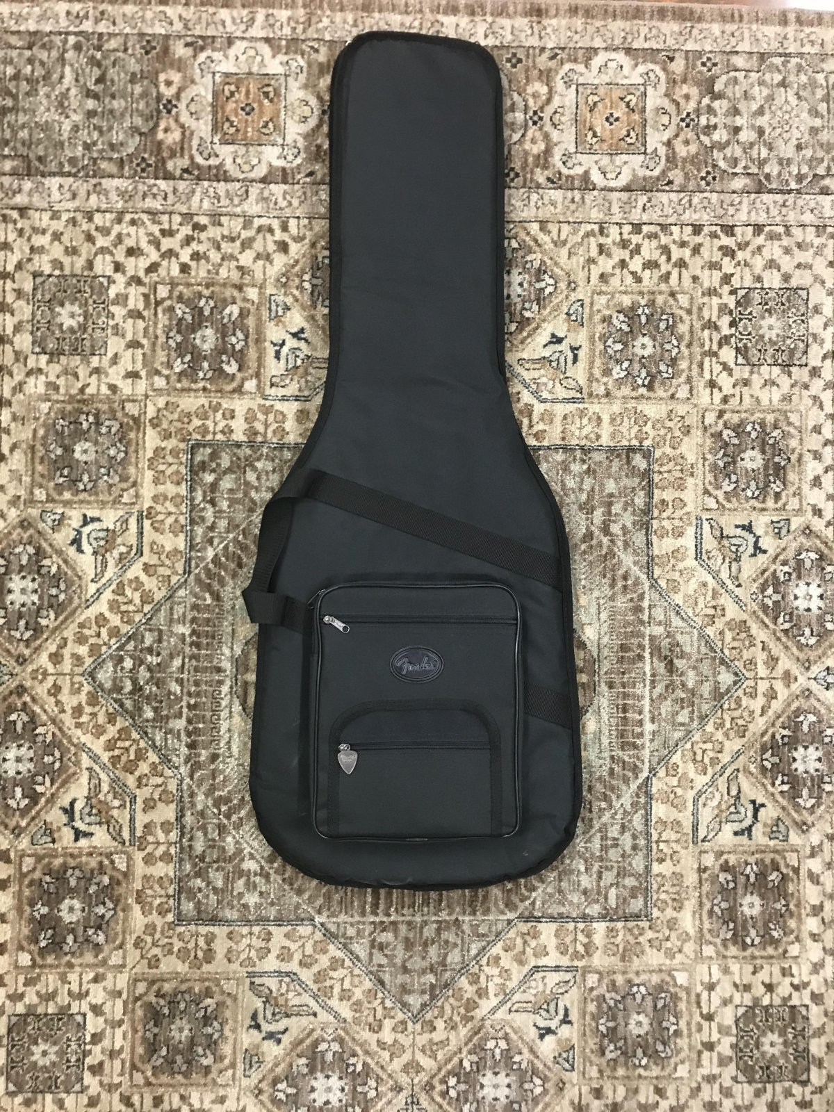 Used Fender Deluxe Electric Gig Bag