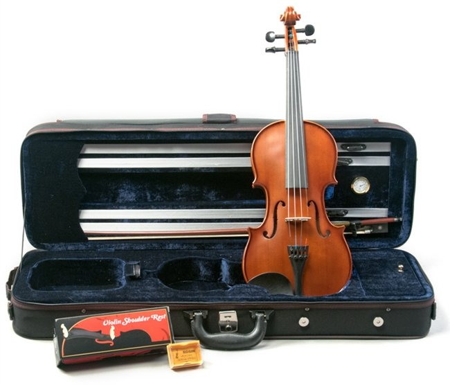 Palatino Full Size Violin Case, with Hygrometer