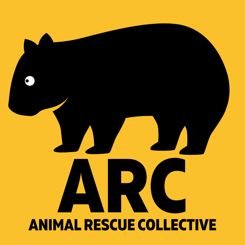 We are raising funds for the Animal Rescue Cooperative!
