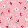 Darlenes Favorites Camellia ADZ-20071-122