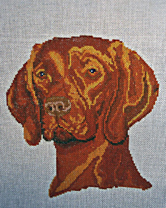 Painted Canvas:  Dog :  NEE