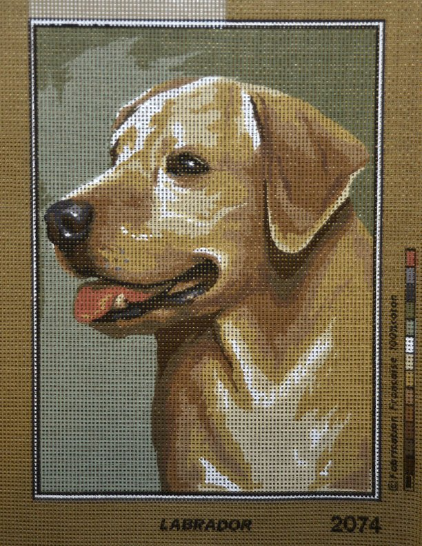 Needlepoint Labrador Dog:  NEE