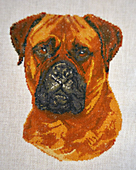 Painted Canvas Dog:  NEE