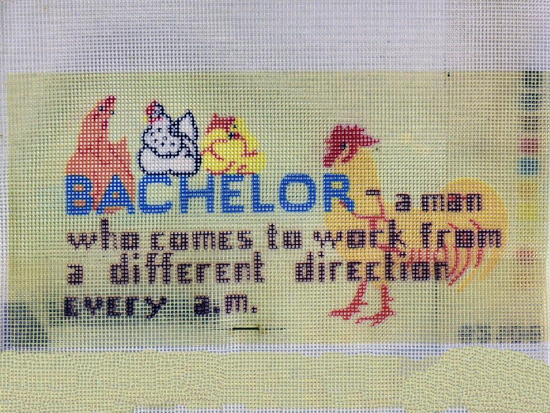 Bachelor:  NEE