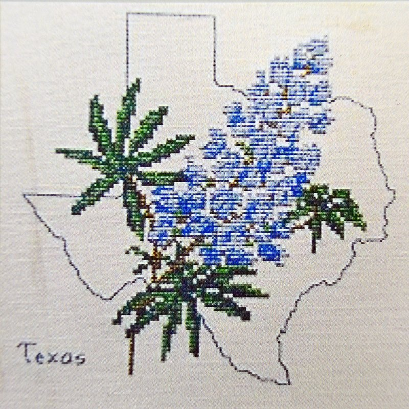State Flower of Texas:  SF906