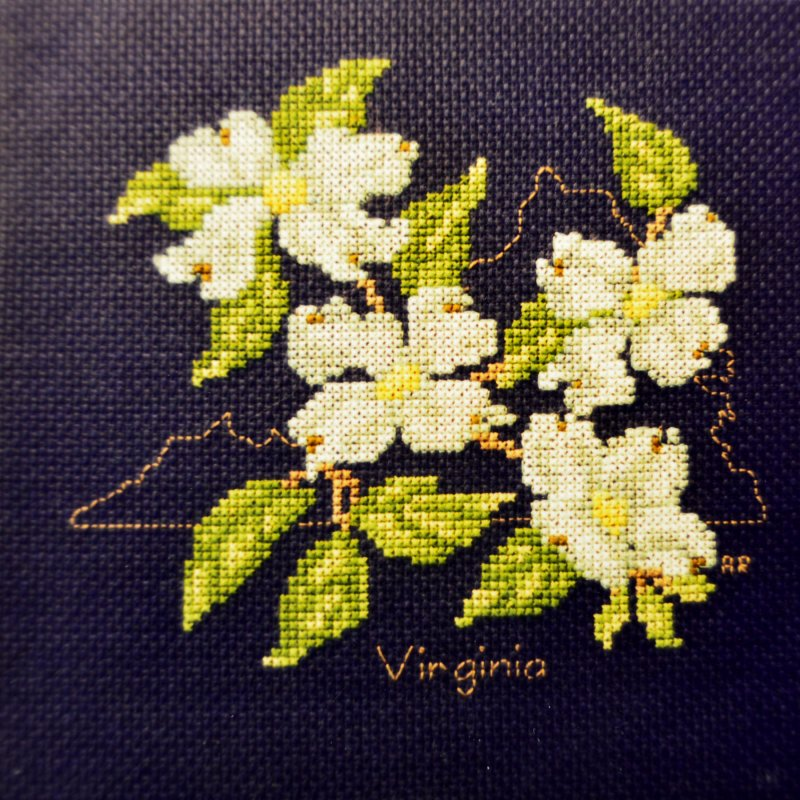 State flower of Virginia:  SF909