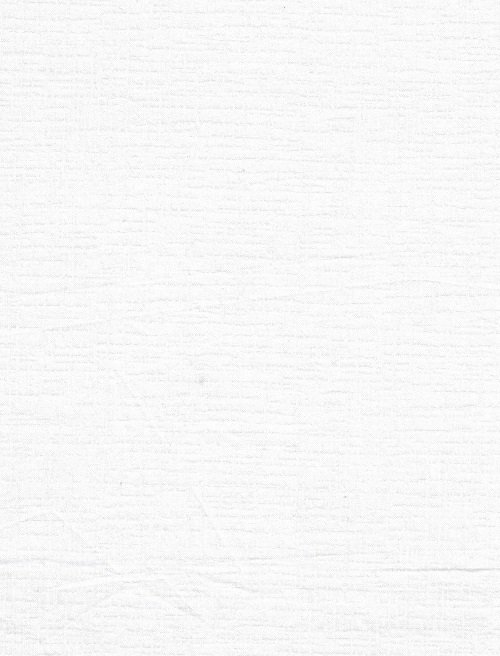 Betula White