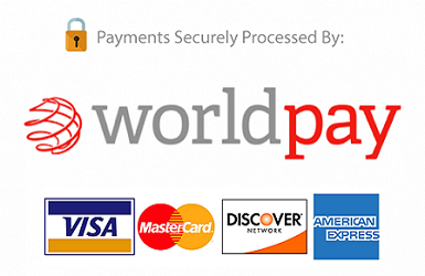 World Pay Secure Processing