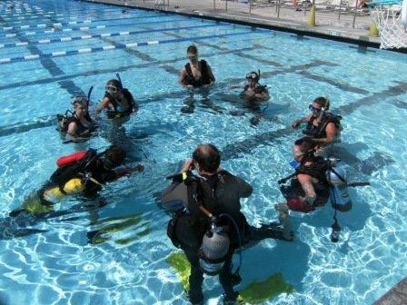 Pool Training Referral