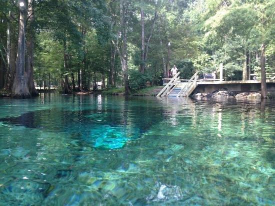 North Florida Cave Trip October 8-13, 2020