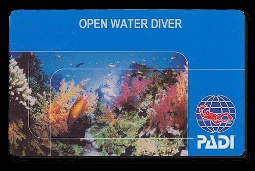 PADI Replacement Card