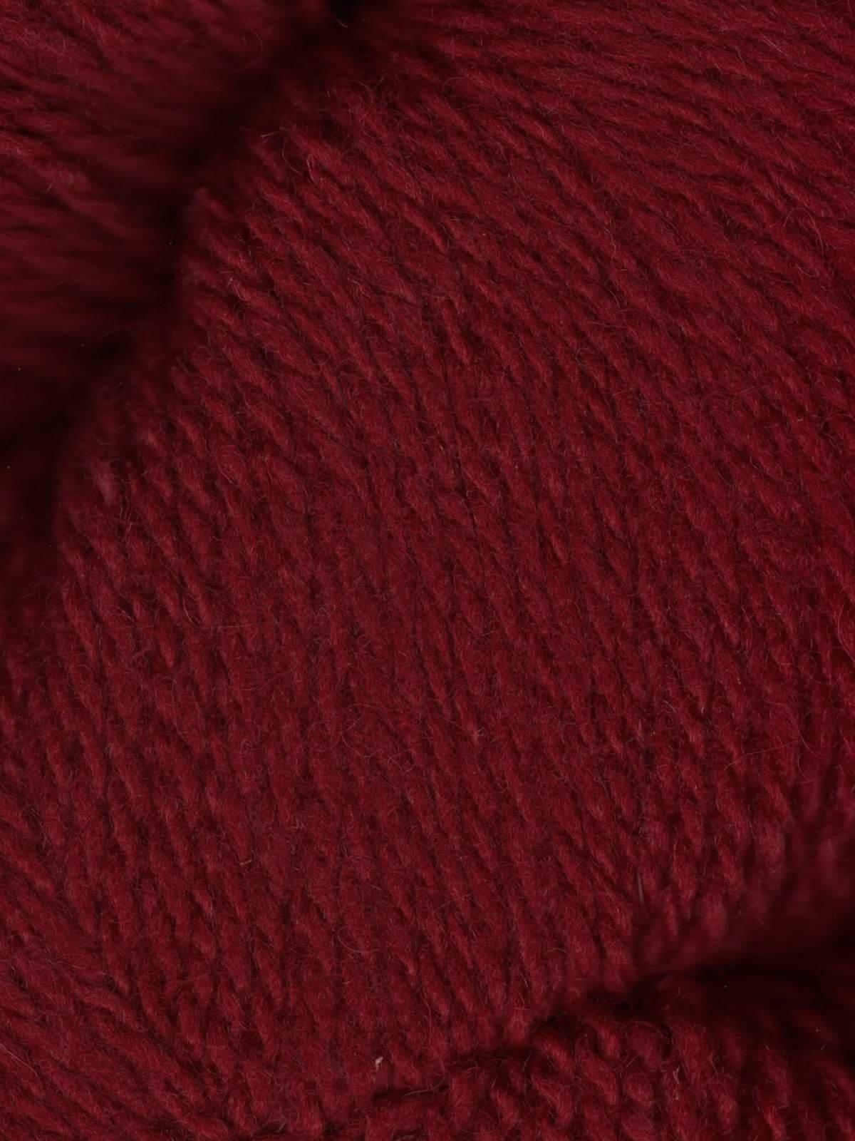 Patagonia - Cardinal
