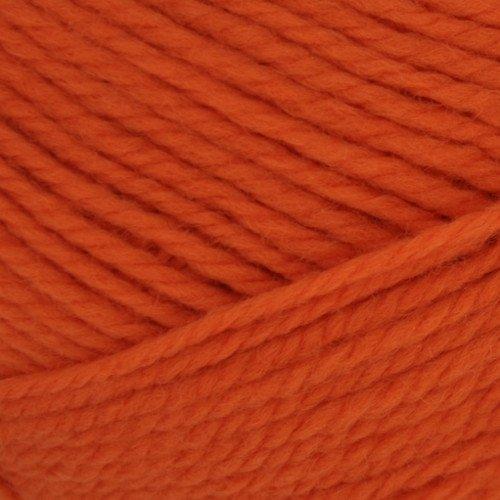 Brown Sheep Nature Spun Worsted Orange You Glad - 54
