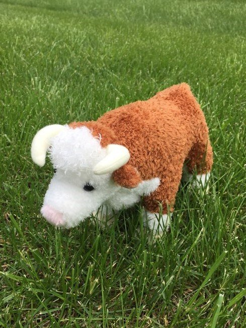 Big Country Herford Bull Plush Toy