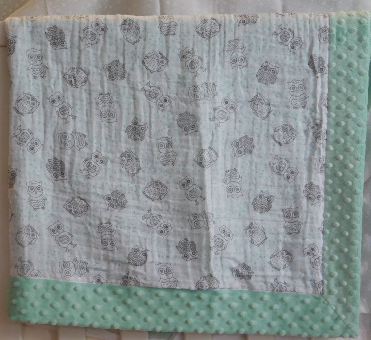 Mint Green Owls Minky-Gauze Blanket