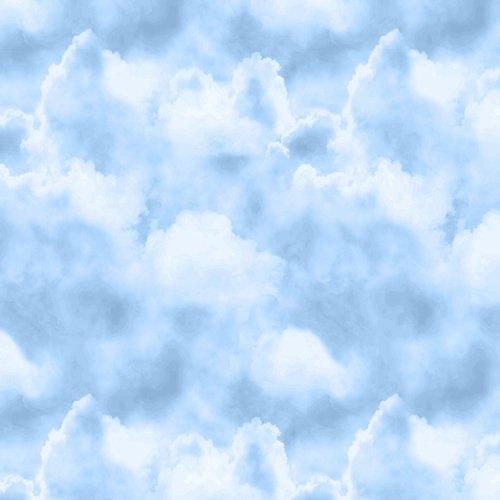 Prairie Gate Clouds by Lennie Honcoop