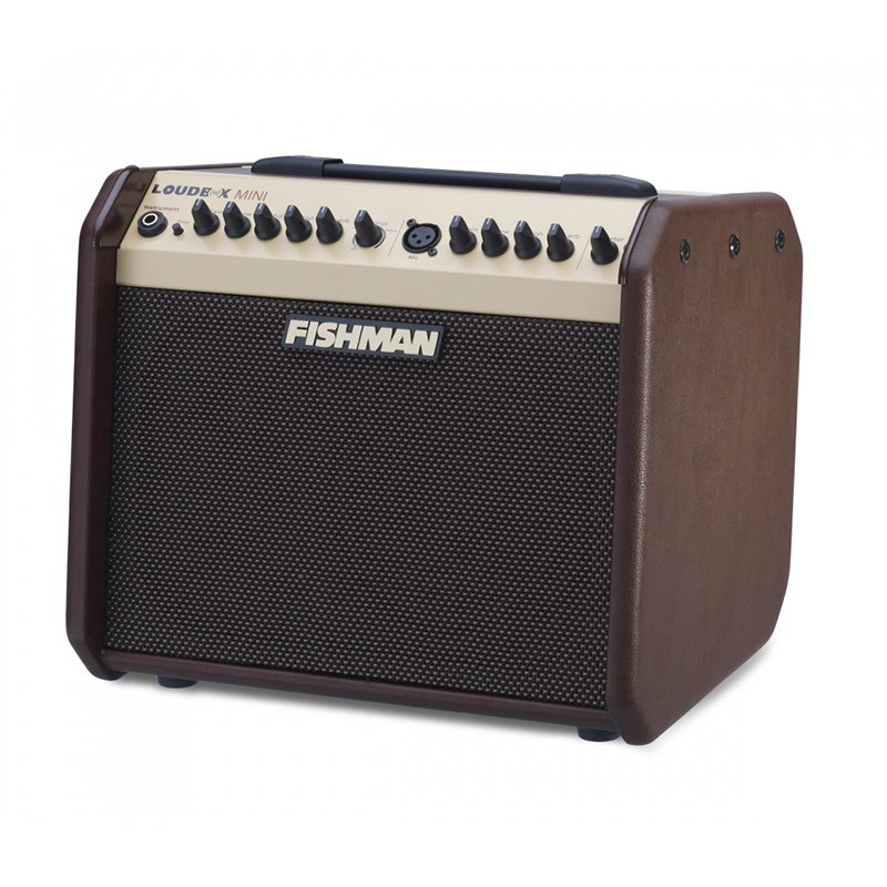 Fishman Loudbox Mini PRO-LBX-500 60W 1x6.5 Acoustic Combo Amp (DISCONTINUED MODEL)