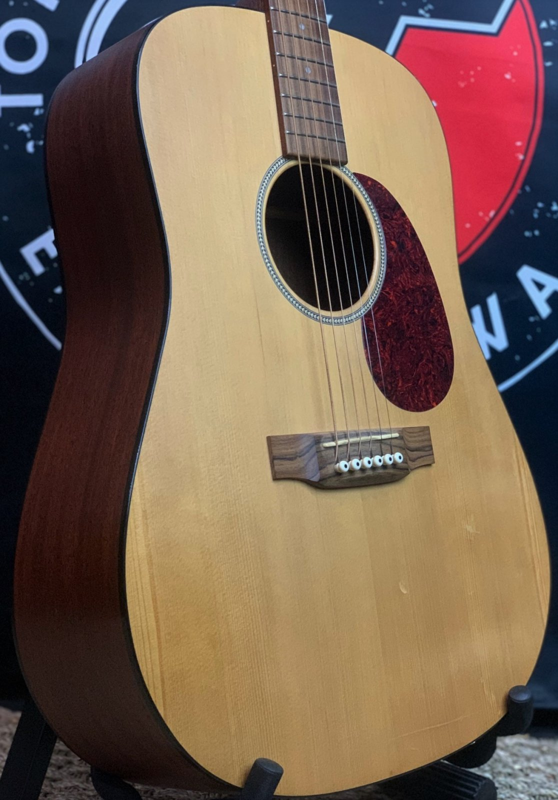 Martin DM USA Mahogany Dreadnought w/Gator GB