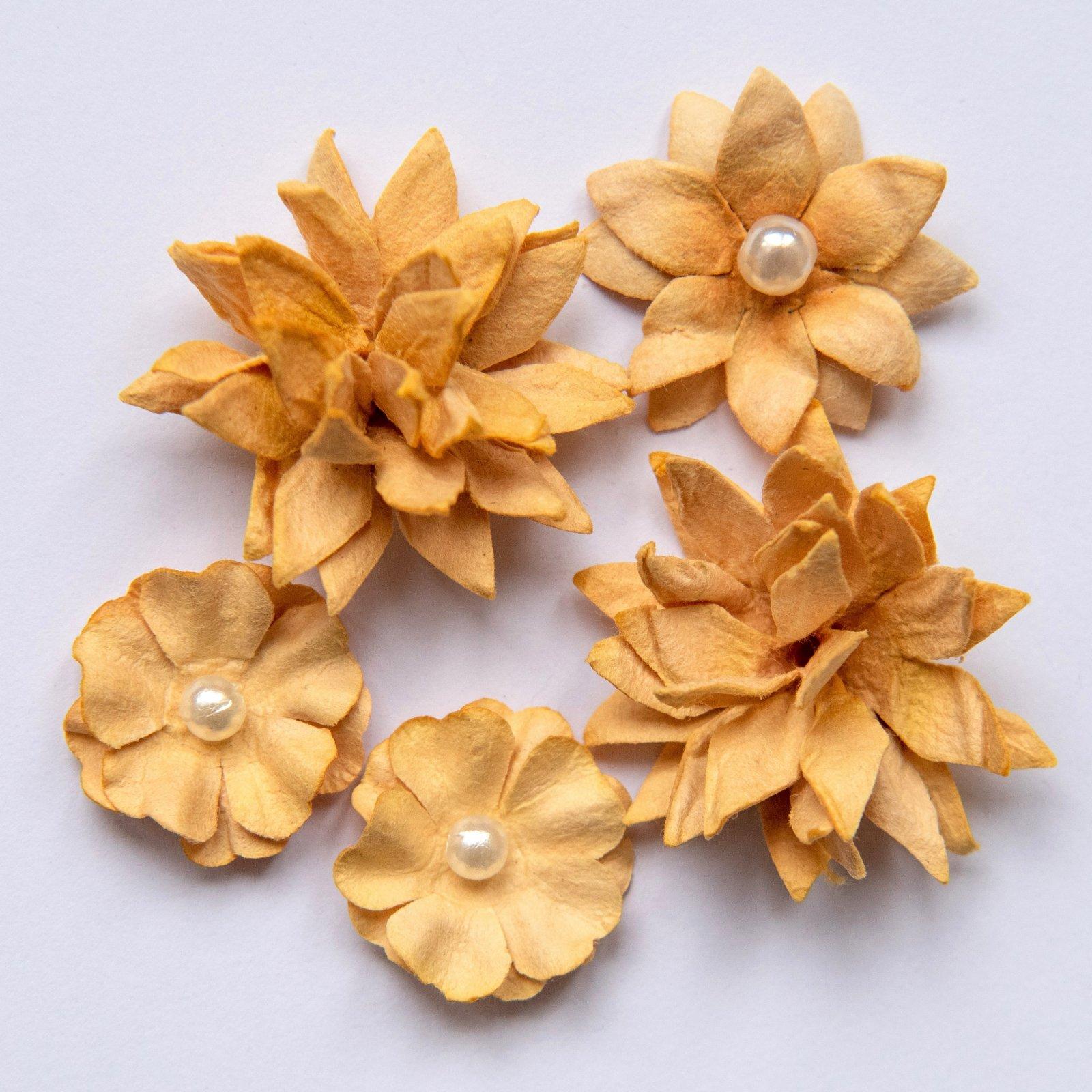 FLOWER MINI SERIES NO.1 - GINGER