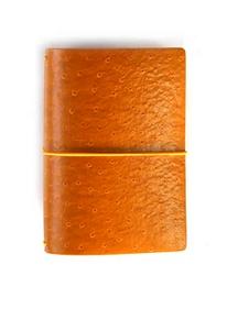 New! Traveler's Notebook Ochre color