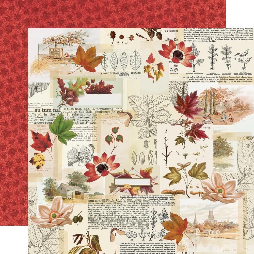 Autumn Splendor Double-Sided Cardstock 12X12-Grateful Hearts