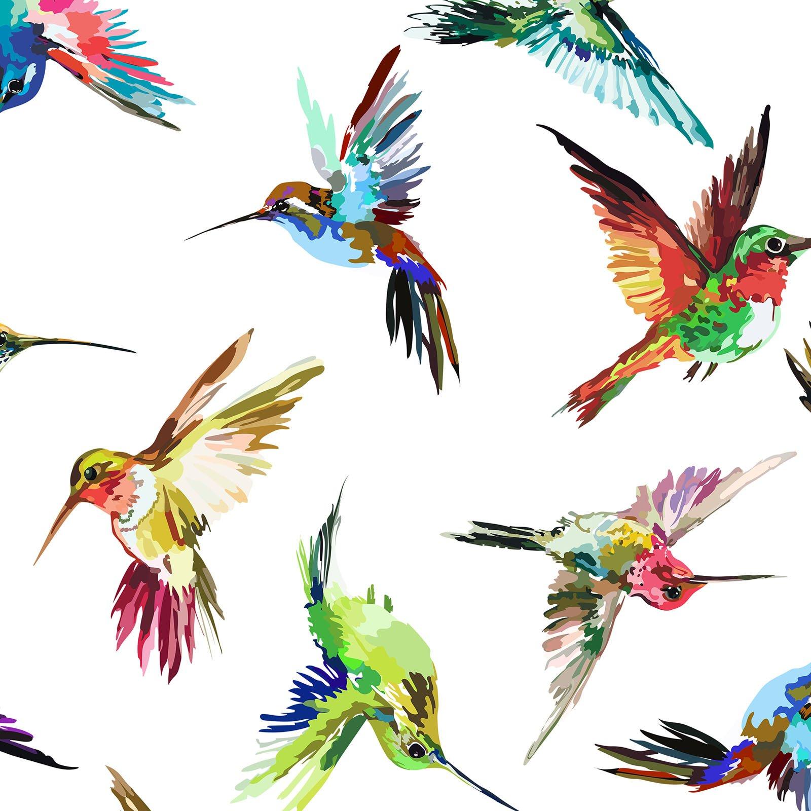 **INTH-10HL 1 - HUMMINGBIRD LANE BY ITB STUDIO HUMMINGBIRDS MULTI