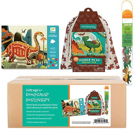 Dinsosaur Discovery Kit