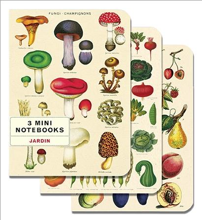 Cavallini & Co. Mini Notebook-3pk Sets