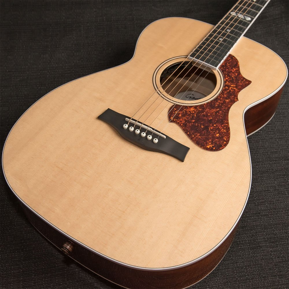 Godin Acoustic Fairmount Concert Hall Natural HG EQ with Tric