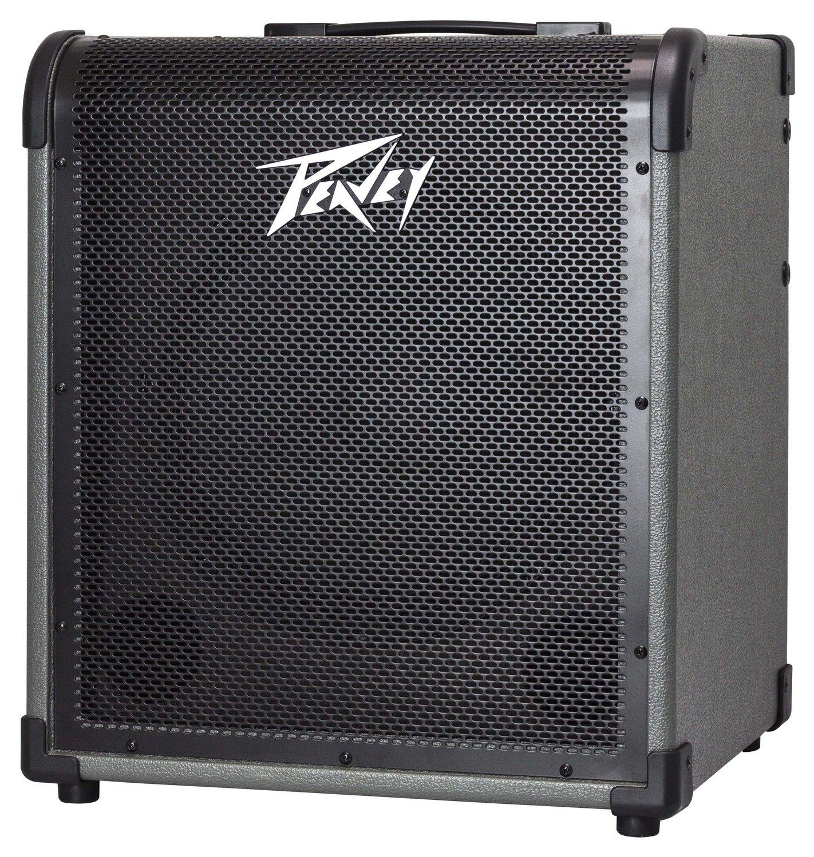 Peavey MAX150 Bass Amp