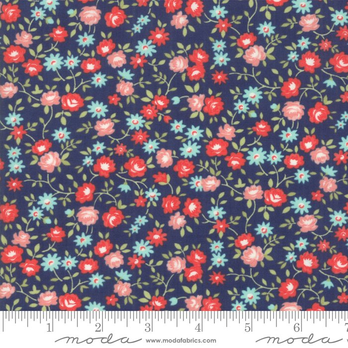 55194-15 Early Bird Rosie Navy with pink
