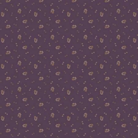 Purple Pansy R170930 0135 Purple