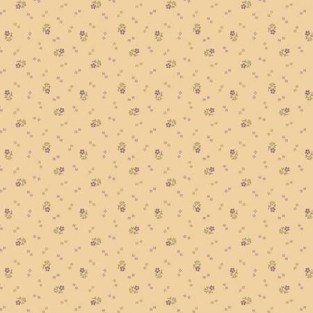 Cream Pansy R170930 0141 Cream