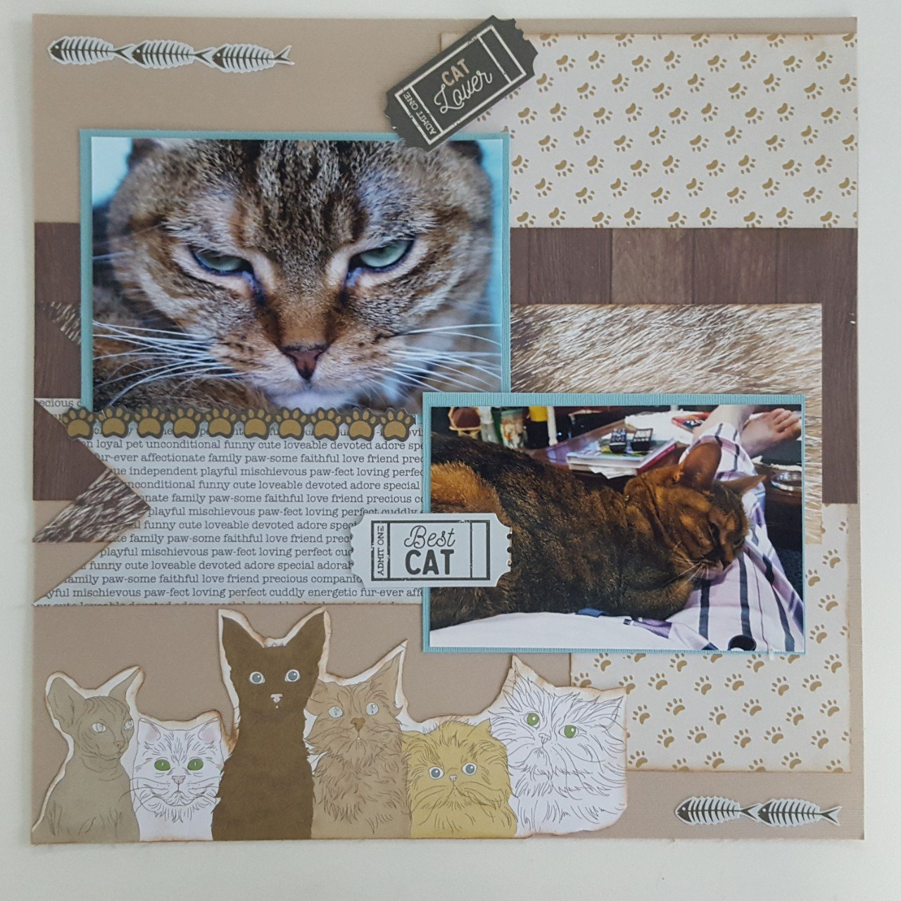 Pawfect Cat 2x2 page layout