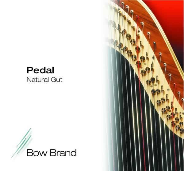 Bow Brand Gut Over 1st Octave
